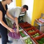 Pascal: répartition des légumes du 20 07 12