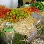 fete de la courge -2013 tomates
