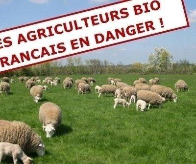 Les agriculteurs BIO en danger!