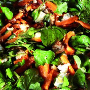 Salade carotte cresson chèvre